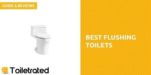 Flushing-Toilet